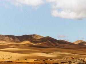 Noleggio auto Aeroporto di Fuerteventura